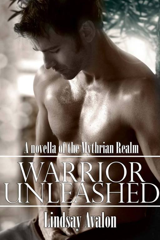 warrior_unleashed_cover
